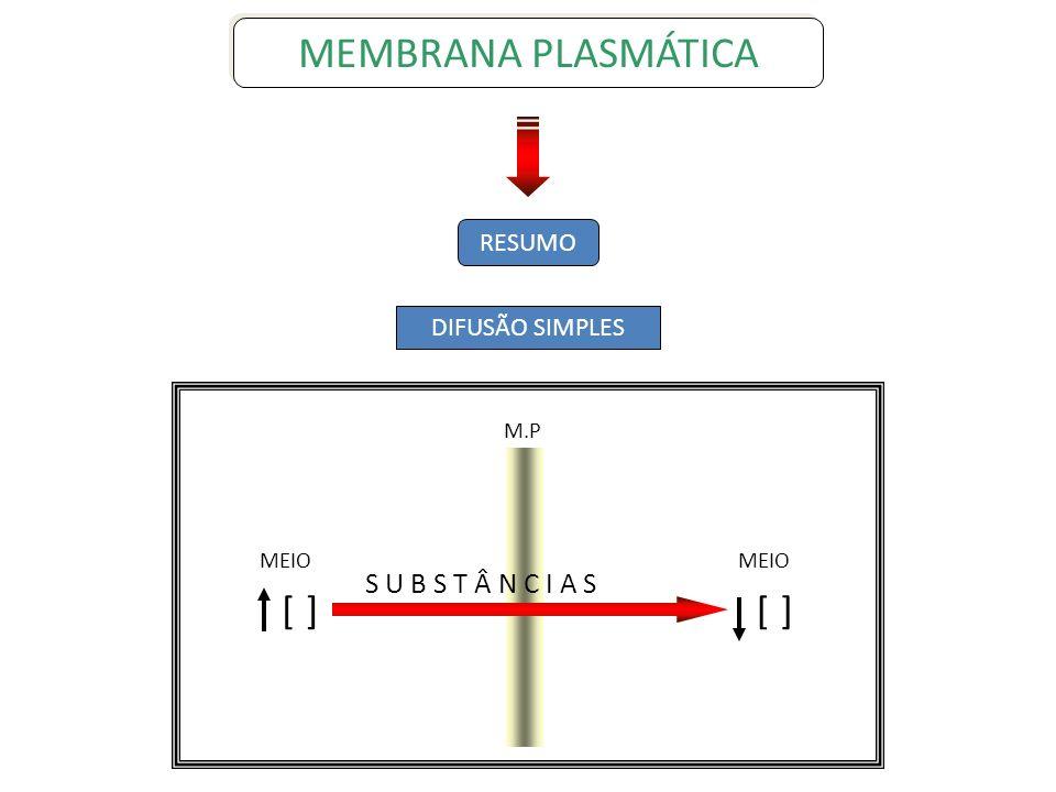 MEMBRANA PLASMÁTICA [ ] S U B S T Â N C I A S RESUMO DIFUSÃO SIMPLES